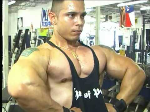 Bodybuilding muscle biceps & triceps - DVD preview - Grade A Guns Vol.