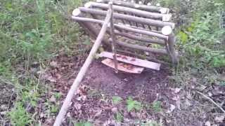getlinkyoutube.com-[HOW TO] Two type of Pheasant Traps.