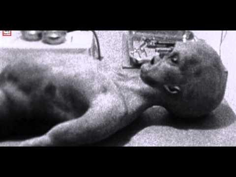 Extraterrestres o Alienigenas reales capturados en la tierra por la nasa usa.