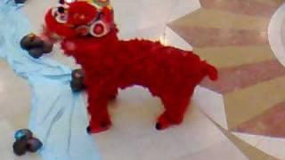 getlinkyoutube.com-Lion Dance WooHoo Part 1