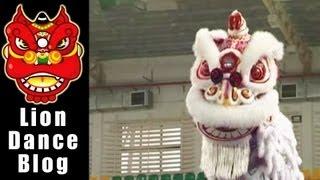 getlinkyoutube.com-2008 Lion Dance Competition - Malaysia Johor Muar Guan Sheng Temple, Dragon Division