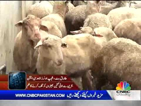 News Hour Sep 16, 2012 Part 05
