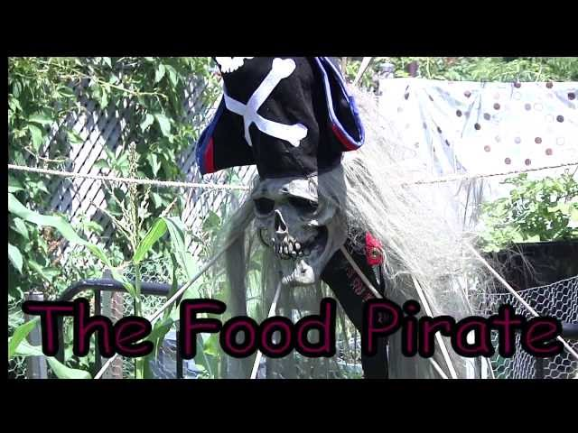 The Food Pirate