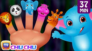 getlinkyoutube.com-Finger Family Nursery Rhymes | Animal Finger Family Songs Collection | Learn Wild Animals | ChuChuTV
