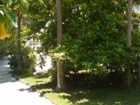 Quinta do Camejo - Casamentos - Baptizados e Festas - Jardim.wmv