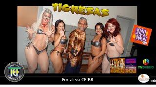 getlinkyoutube.com-Talento em Foko focaliza AS TIGRESAS do programa Joao Inacio Show da TV Diario Fortal