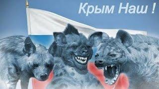 getlinkyoutube.com-Фашистский режим Путина убивает детей. Солдатские матери.