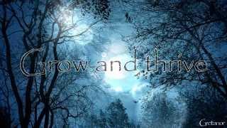 Insomnium-Lose To Night (Lyrics on Video) HD
