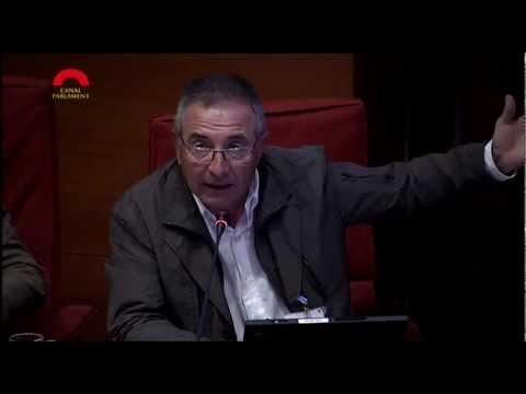 Presidente de ASCAD, Andrés Rueda en una comparecencia en el Parlament de Catalunya