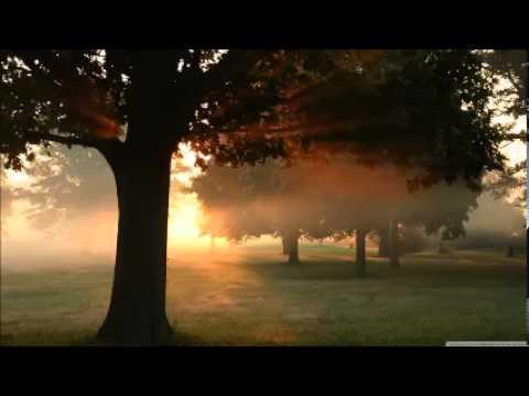 Sal Saqeb - Horizons on Fire (melodic progressive house 2003)