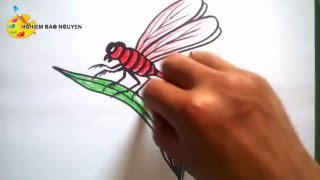 getlinkyoutube.com-Vẽ con Chuồn chuồn/How to Draw Dragonfly