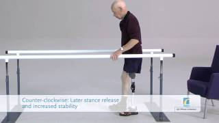 Balance Knee