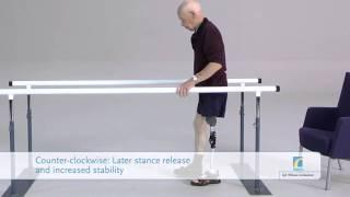 Balance Knee