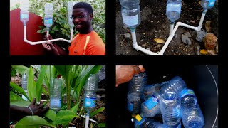 getlinkyoutube.com-RECYCLING BOTTLE: HOMEMADE DRIP IRRIGATION SYSTEM: agrosuede