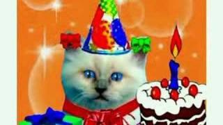 Micio Buon compleanno! tanti auguri a te