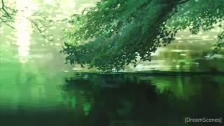 [DreamScene] Green Nature.