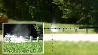 getlinkyoutube.com-Air Rifle Shooting Beers @ 170 Yards