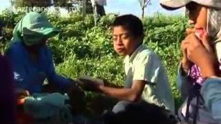 Los migrantes del hambre: esclavitud infantil en México