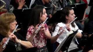Orquestra Acordes Celeste -  Maestro -  Wellington Machado