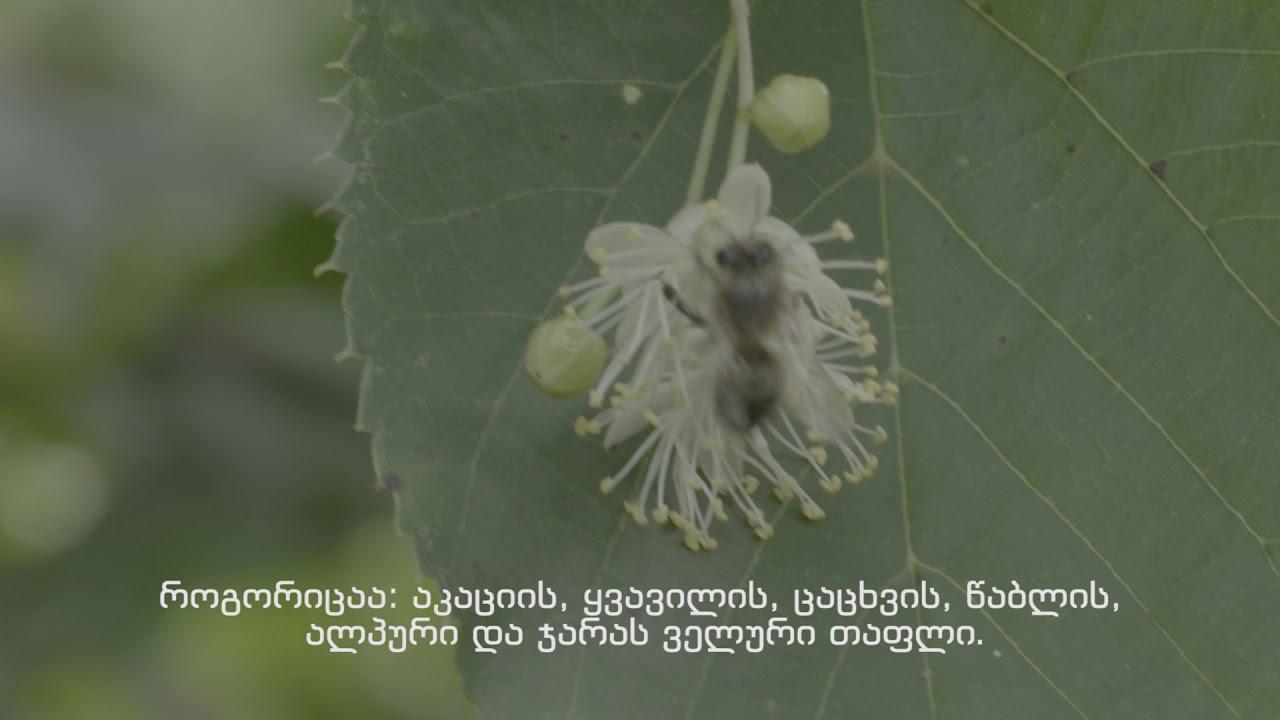 georgian_beekeepery