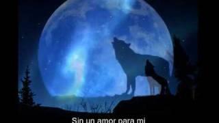getlinkyoutube.com-Blue Moon - Bobby Vinton ( con subtitulos al español ).wmv