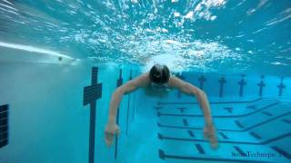 getlinkyoutube.com-Butterfly Swimming Technique - How to swim butterfly