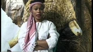 getlinkyoutube.com-Carine mokonzi a sengi pardon epayi ya ba kinois na micro ya Henriette kanjinga pona photo ya marie