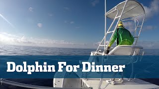 getlinkyoutube.com-Dolphin Fishing;  How To Catch Dolphin For Dinner