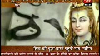 Nag Nagin in Shiv Mandir