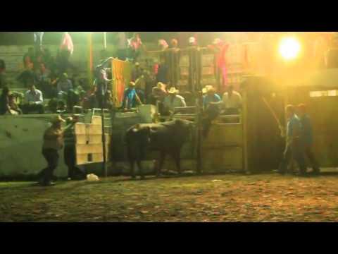 Final torneo de toros de reparo Copa Corona Almoloyan 2014