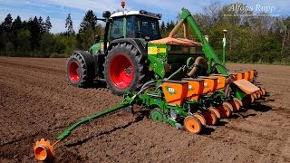 getlinkyoutube.com-Fendt 820 mit Amazone ED 602 beim Mais säen