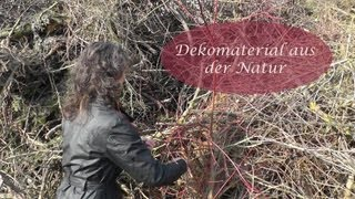 getlinkyoutube.com-Tipp #1 Tolle Dekomaterialien aus der Natur oder vom Sammelplatz für Gartenabschnitte