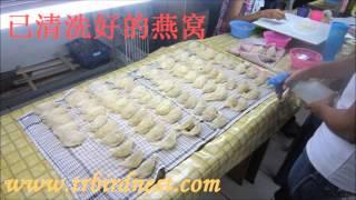 getlinkyoutube.com-Birdnest Manufacturing Process