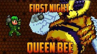 getlinkyoutube.com-Terraria - Queen Bee first Night [Speedrun Challenge]