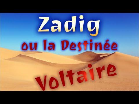 Zadig, Voltaire - Chapitre 9 : La Femme battue