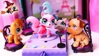 getlinkyoutube.com-Littlest Pet Shop Lily Muestra Todos sus Vestidos Littlest PetShop Toys
