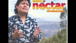 getlinkyoutube.com-Grupo néctar - Internacional - Pecadora
