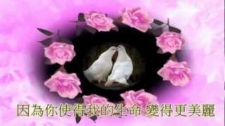 getlinkyoutube.com-陳蘭麗-永遠記得你