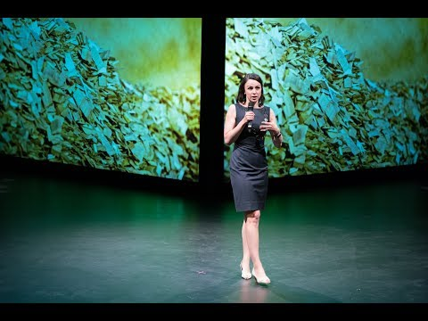 Forestry: Sustainable Innovation by Ann Normand
