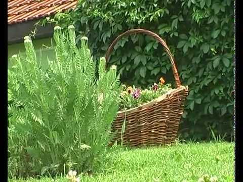 Dani otvorenih dvorista Batocina 2011 (part2)