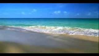 getlinkyoutube.com-The Beach