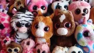 getlinkyoutube.com-My Beanie Boo Collection!