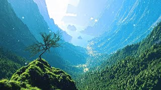 3 HOURS of Relaxing music