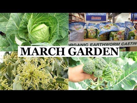 California Garden March 2017 - Happy Spring Season!