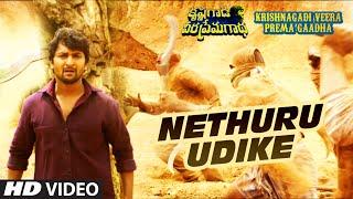 Netthuru Udike Full Video Song || Krishnagadi Veera Prema Gaadha (KVPG) || Nani, Mehr Pirzada