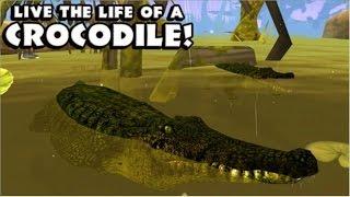getlinkyoutube.com-Nile Crocodile: Wildlife Simulator  - iPad,iPhone 3GS,4,4S,5,5c,5s,iOS 4.0