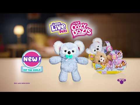 Little Live Pets Cozy Dozy Koala Kip