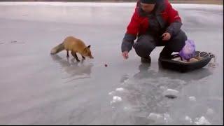 getlinkyoutube.com-Ice Fishing Adventures