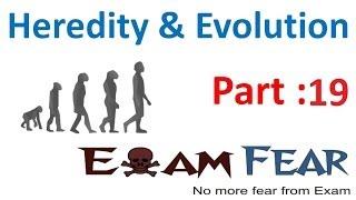 Biology Heredity & evolution part 19 (Human evolution & Questions) CBSE class 10 X