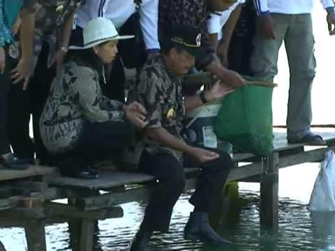 Desa Wisata Ikan Air Tawar Pati